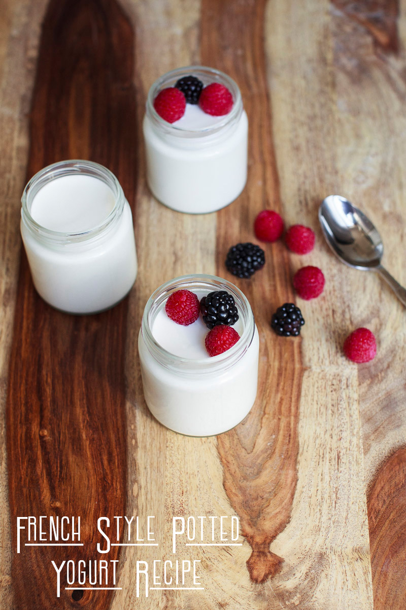 French Yogurt Recipe