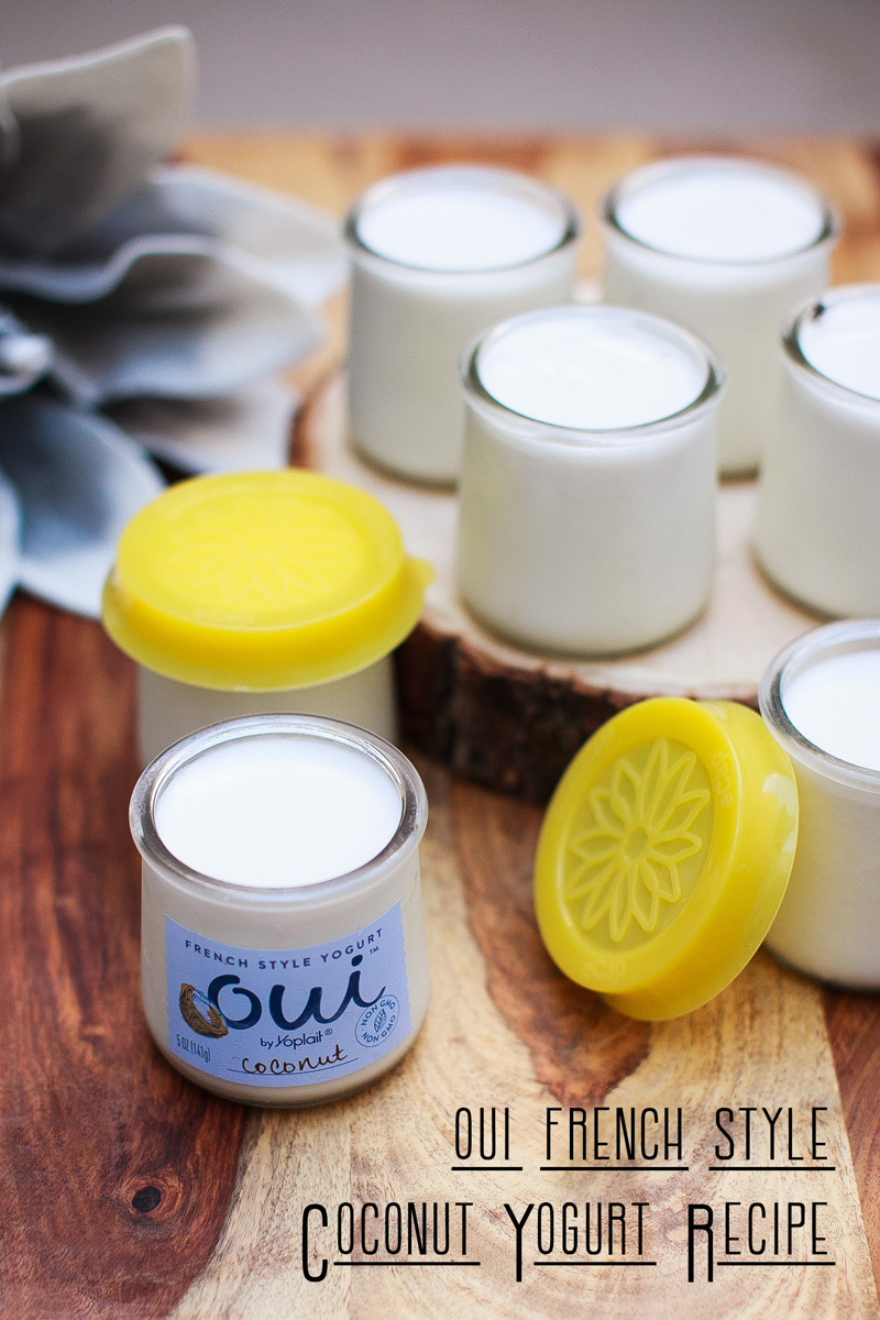 Oui Coconut Yogurt Recipe