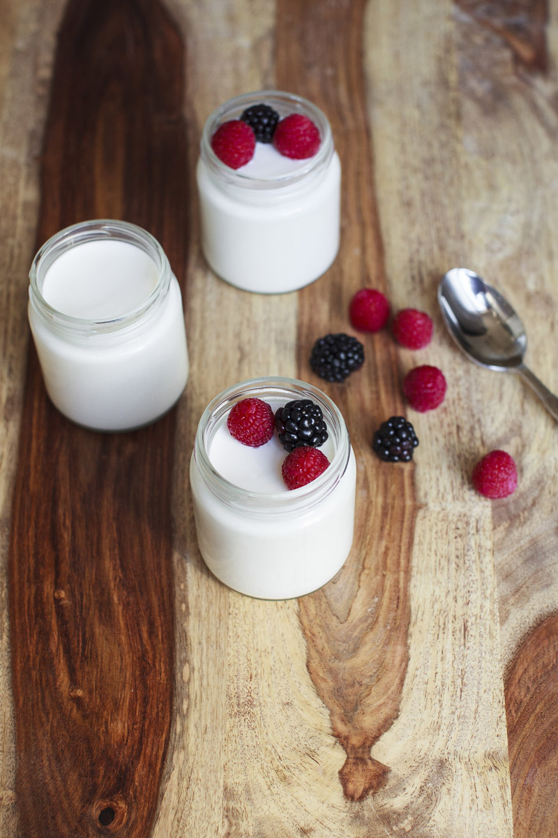 French Style Potted Yogurt Recipe No Boil Method