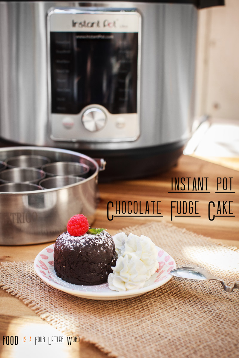 Instant Pot Chocolate Fudge Cake Recipe
